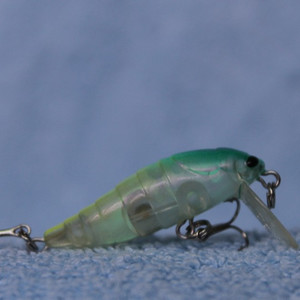 Tackle House Elfin Cicada